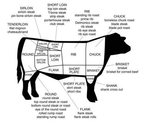 cow diagram beef diagrams diagram site