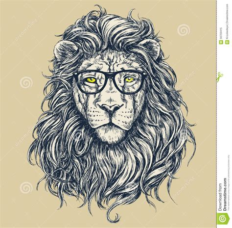 picture illustration hipster lion vector illustration glasses separated stock