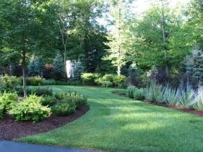Backyard Cleanup Services The Best Trees And Shrubs For A Natural Privacy Fence