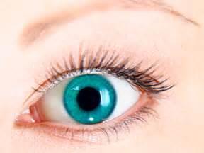 imagenes wallpapers de ojos cuatro cosas que se pueden averiguar mirando tus ojos