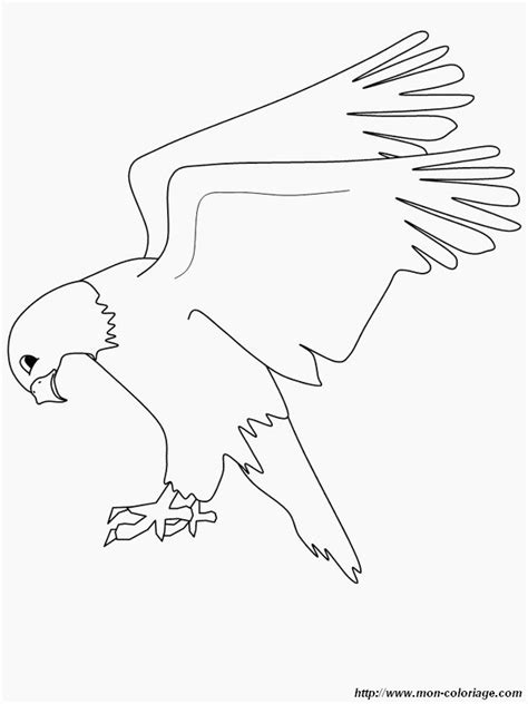 coloring page of eagle flying eagle flying coloring page www imgkid com the image