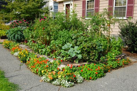 edible gardens landscaping landscaping ideas for front yard edible gardens