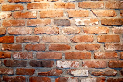 Interior Brick Wall Tiles by Reclaimed Thin Brick Veneer Thin Brick Veneer Brick