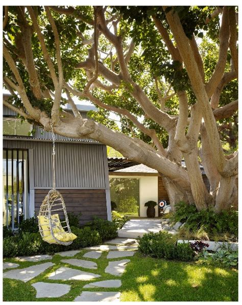Tree Swing Path Swing For The Home Pinterest