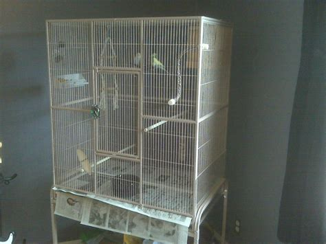 bird flight cages for sale bird cages
