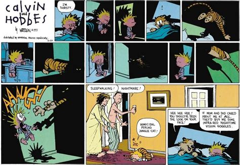 homicidal psycho jungle cat a calvin and hobbes collection calvin and hobbes nightmare fuel tv tropes