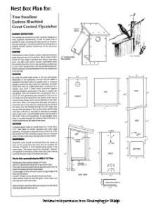 Eastern Bluebird House Plans Free Eastern Bluebird House Plans 17 Best 1000 Ideas About