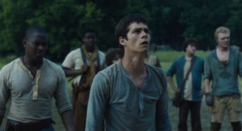 film maze runner kaskus movie review quot the maze runner quot enthralls you with good