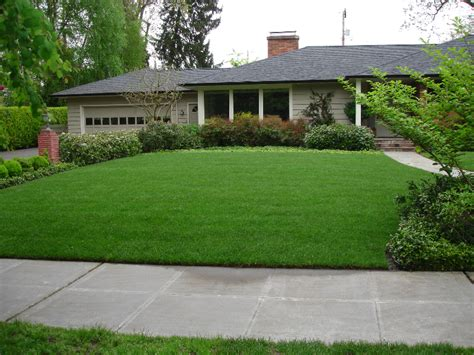 curb appeal lawn care curb appeal green thumb landscaping