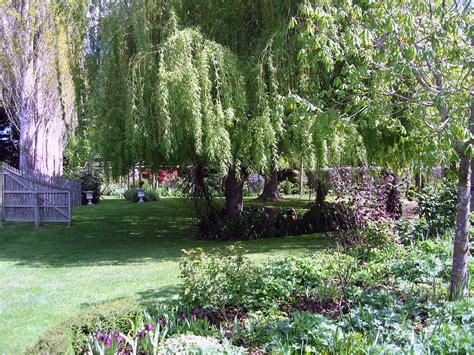 Millstream Gardens by Millstream Gardens 9 Photograph By Rachael Shaw