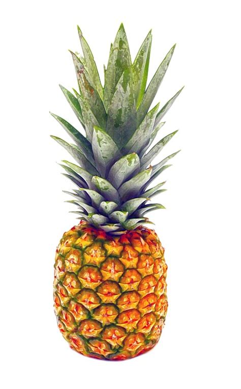 Pineapple Fruit my top 5 summer fruits and veggies st joseph s college