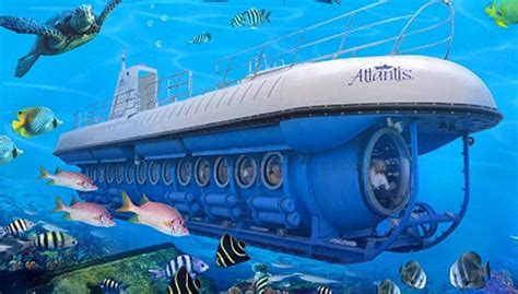 best tour maldive maldives submarine tour