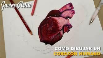 imagenes de un corazones c 243 mo dibujar un coraz 243 n humano con prismacolor javier