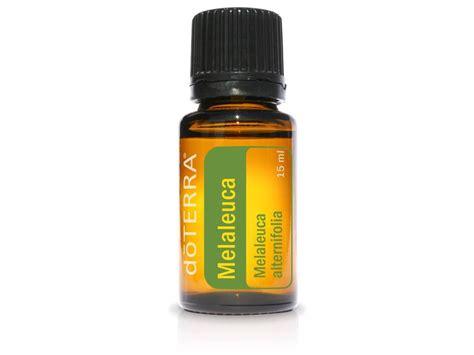Tea Tree Aromatherapy Essential 15ml Bathaholic doterra 15ml tea tree melaleuca essential ebay