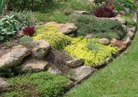 Building A Rock Garden Building A Rock Garden Everything You Wanted To