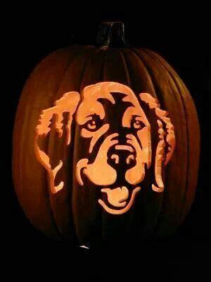 golden retriever pumpkin stencil free pumpkin carving stencils of favorite breeds breeds picture