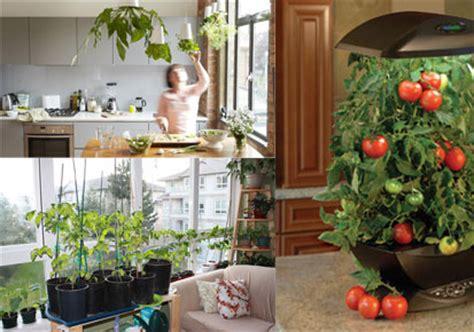 Indoor Vegetable Gardening Home Design Elements How To Start An Indoor Vegetable Garden