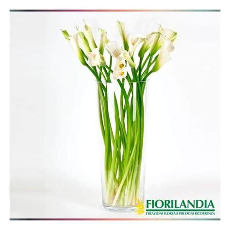 vaso con calle 10 calle con vaso di vetro fiorilandia vendita