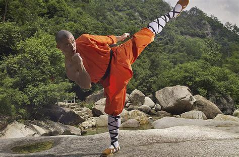 complete guide  shaolin kung fu shifu yan lei