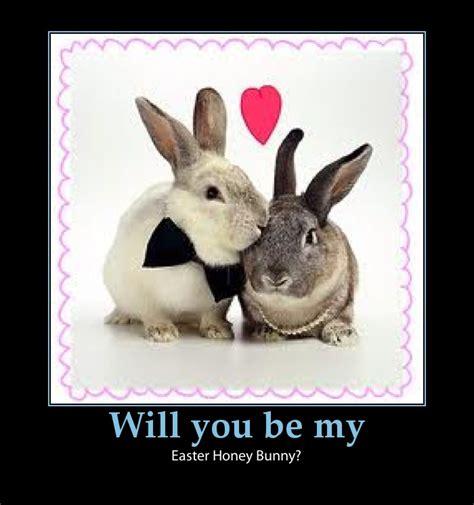 easter fun   web easter bunny jokes   liners