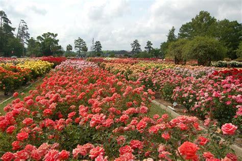 Edisto Memorial Gardens by Edisto Memorial Gardens Orangeburg South Carolina Sc