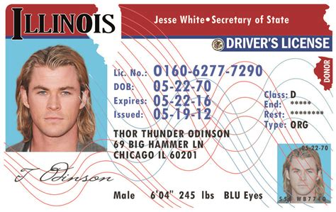 illinois id card template illinois il drivers license id viking