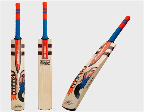 beste bat top 10 best cricket bats in the world 2016