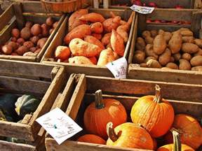 throwbackthursday fall foods for good moods your body