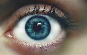your blue eyes are like the ocean gahmi photography