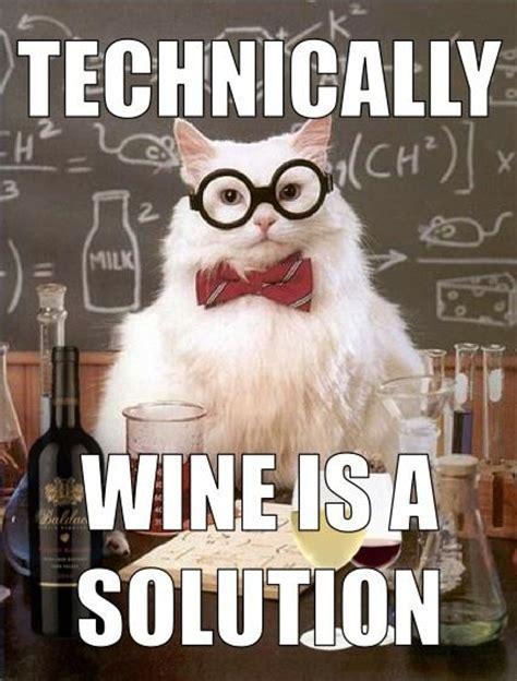 images  wine memes  humor  pinterest