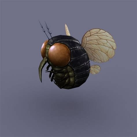 fliese rund fly insect 01 3d model ready max obj