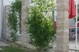 steine für garten kaufen chestha dekor zaun gabionen