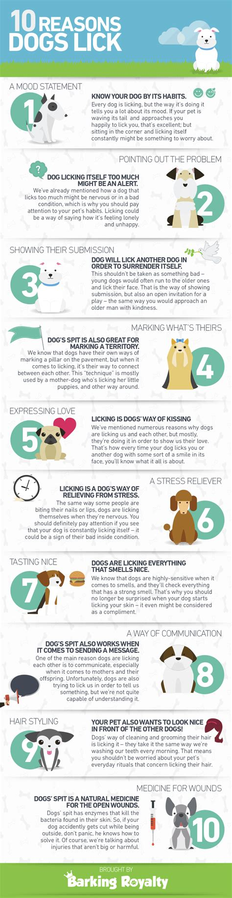 why do dogs everything why do dogs infographic barking royalty