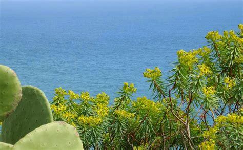 cing dei fiori pietra ligure pietra ligure non mare per la tua famiglia viaggi