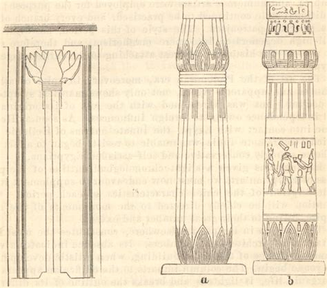 House Plans For Free file papyrus columns 1885 timea jpg wikimedia commons