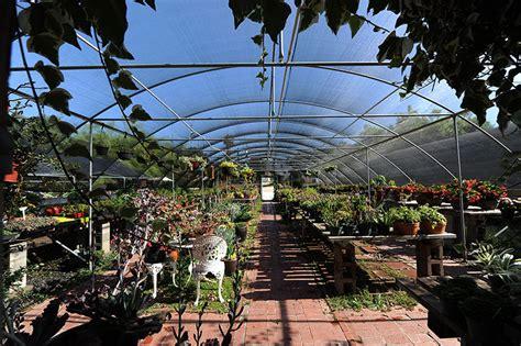 organic garden st madeleine s center serving