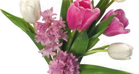 vasi per fiori recisi fiori in vaso fiori per cerimonie fiori in vaso quali