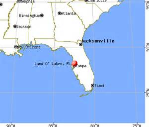 land o lakes florida fl 33559 34638 profile