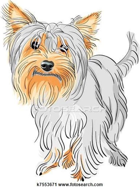 yorkie clipart 236 best dessin yorkie images on terriers yorkie and yorkies