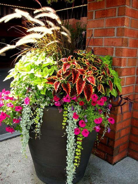 Flower Arrangements For Outside Planters by 25 Best Ideas About Front Porch Planters On