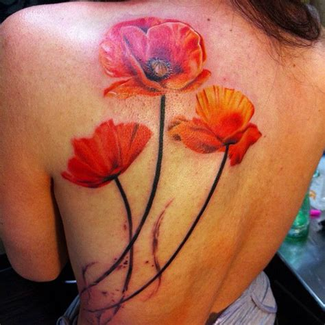 pinterest tattoo poppy best 25 poppy flower tattoos ideas on pinterest poppy