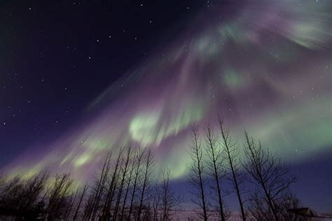 reykjavik iceland northern lights northern lights reykjavik iceland i want to go to