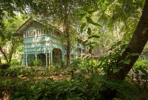 Wild India: step into the real life Jungle Book