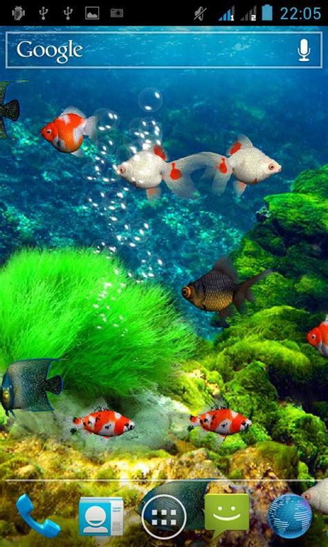 wallpaper animasi hidup android download gratis aquarium wallpaper hidup gratis aquarium