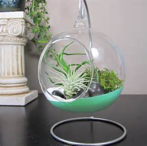 glass terrarium bubble air plant containers with stand for