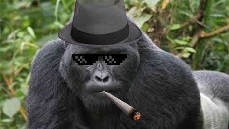 mlg gorillas youtube