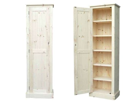 shallow storage cabinet with doors shallow storage cabinet cabinets sideboards with doors