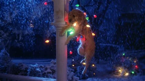 gremlins movie dog christmas lights the wolfman cometh