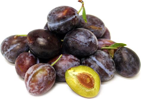 sugar plums information recipes and facts
