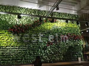 interior plant wall living walls versawalls interior plant design los